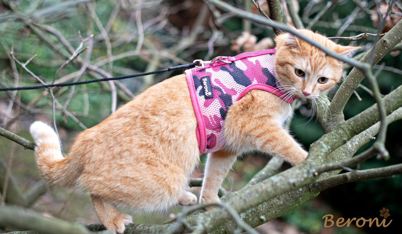 kattenvest tuig roze
