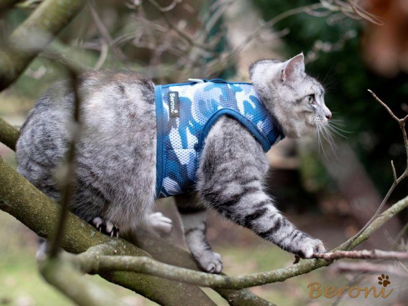 Kattenvest kattentuigje