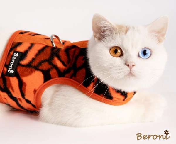 Walking jacket vest ORANGE TIGER zacht en warm voor de herfst, winter en lente