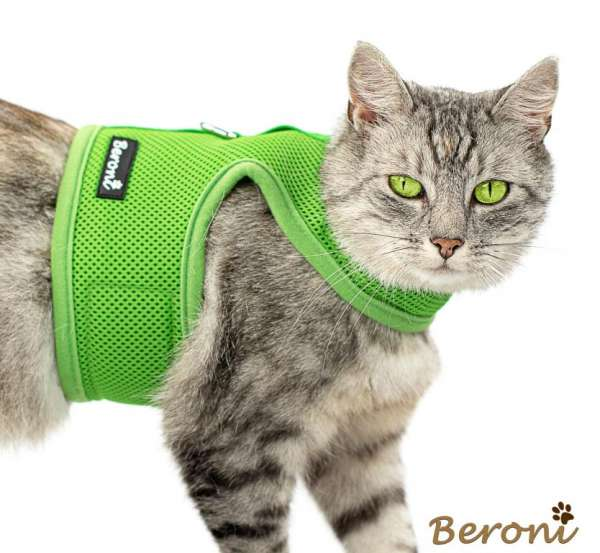 Beroni® kattentuig vest soft CLASSIC uni groen