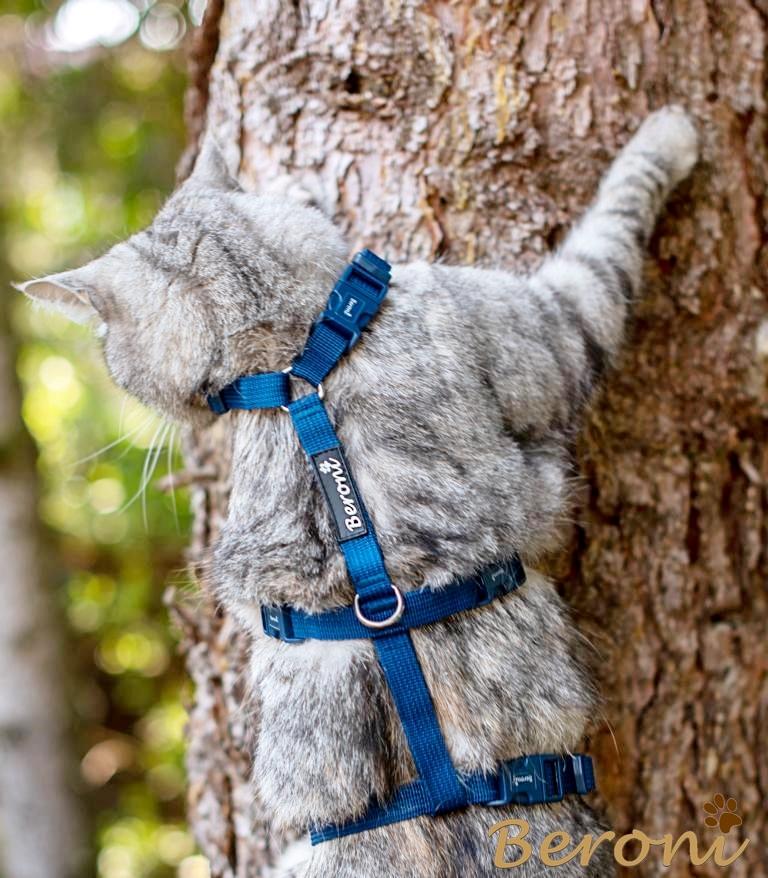 kattentuigje kattenharnas blauw safety